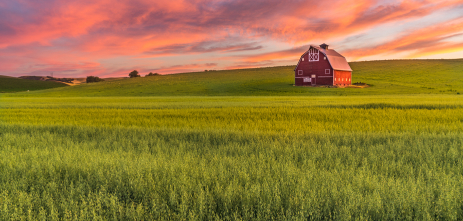 red barn in a field at sunset